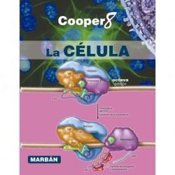 Cooper. La célula